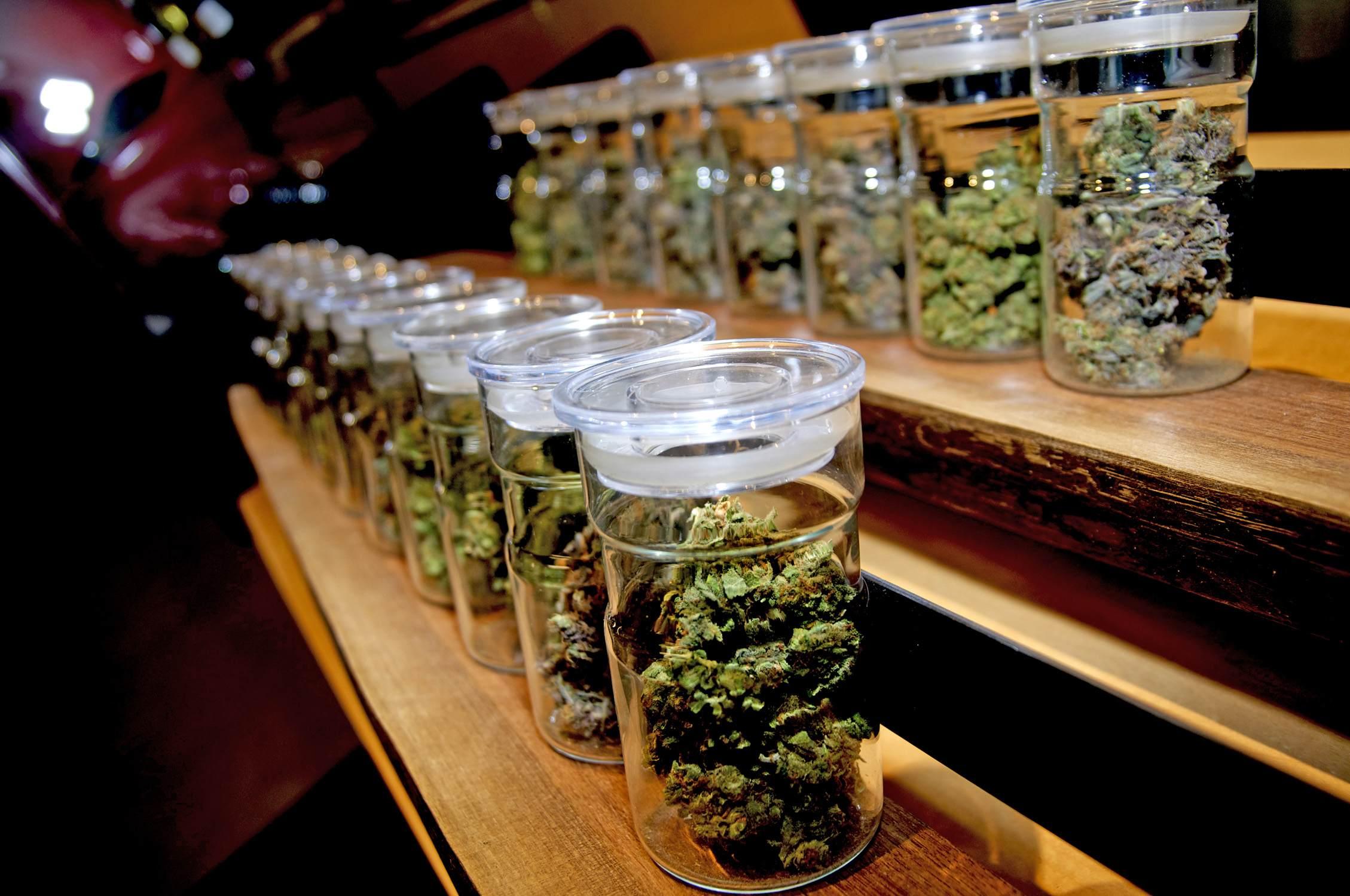 Primer foro sobre el consumo de marihuana