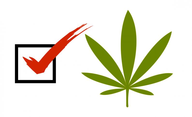 vote-marijuana