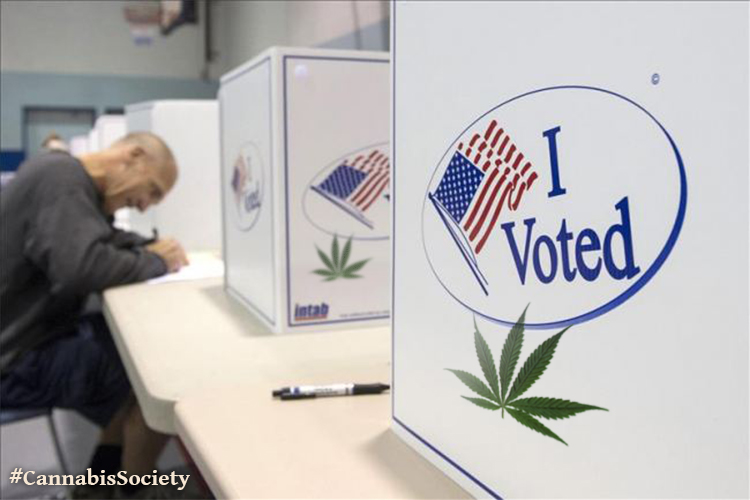 I_Voted_For_Weed